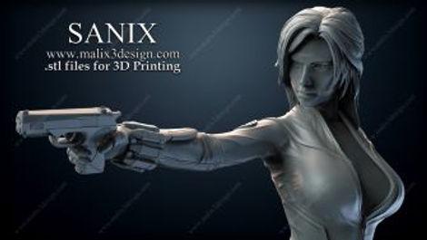 Sanix-000.jpg