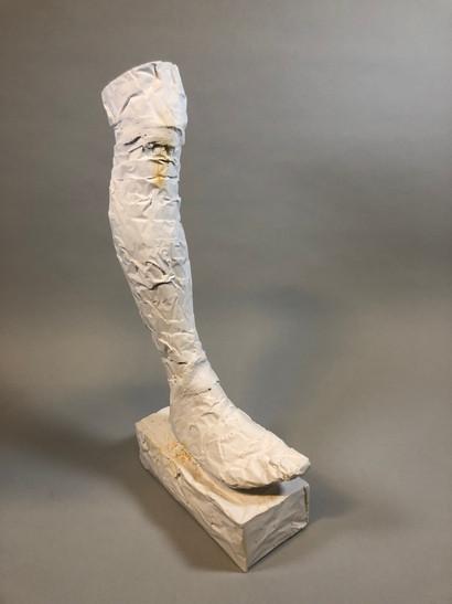 Self Portrait Leg