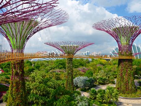 Singapur a.k.a. ázijský Manhattan