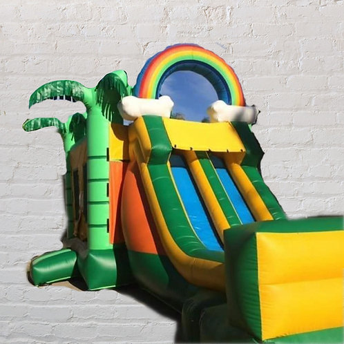 13'x33 Bouncer with 2 slides - Palm trees - Dry