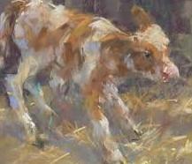 'Schilderen met pastel' met Corry Kooy