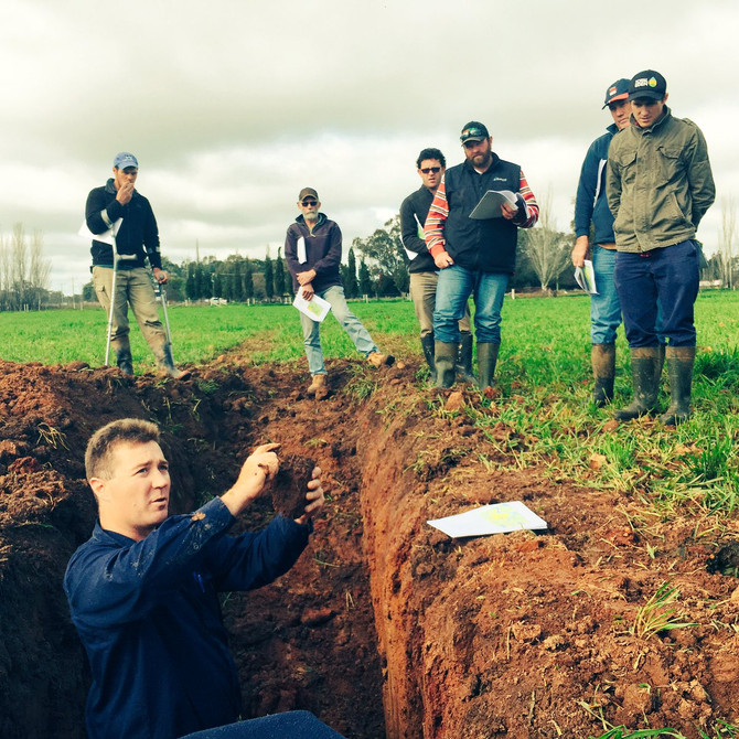 Soil Constraints Roadtrip highlights impact of soils on productivity