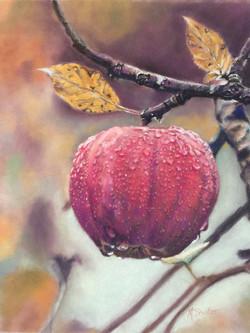 Autumn's Offering