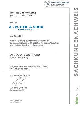 Robin Airbag und Gurtstraffer .jpg
