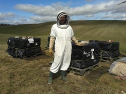 soso apiculture 001