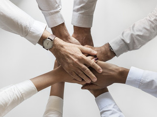 6 Ways to Gain Partnership Cohesion (An Organizational Insight)