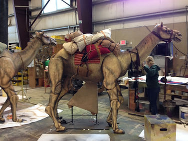 Camelimage.jpeg