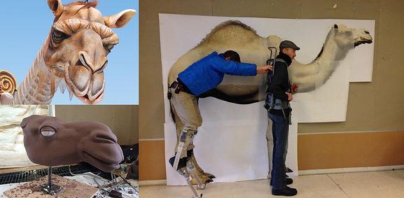Camel_BTS.jpg