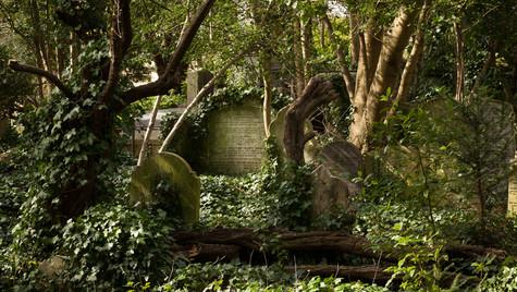 Green graves