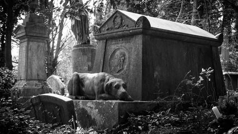 Thomas Sayers' grave, West Cemetery, Highgate