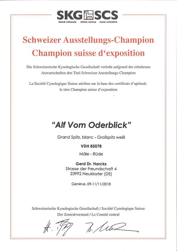 2018-11-11_alf-vob schweizer ausstellung