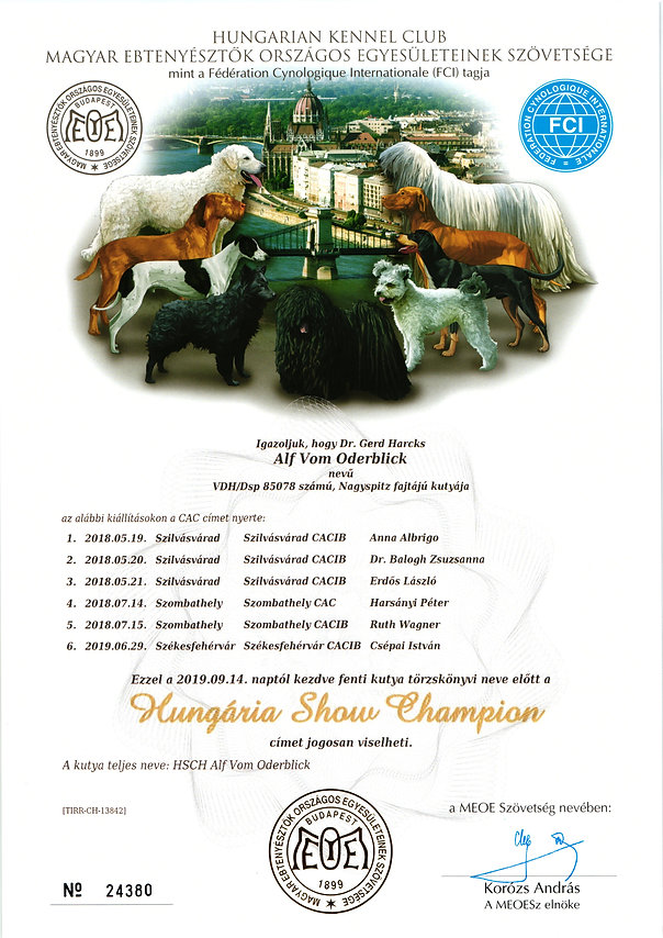 2018-09-14_alf-vob hungaria show champio