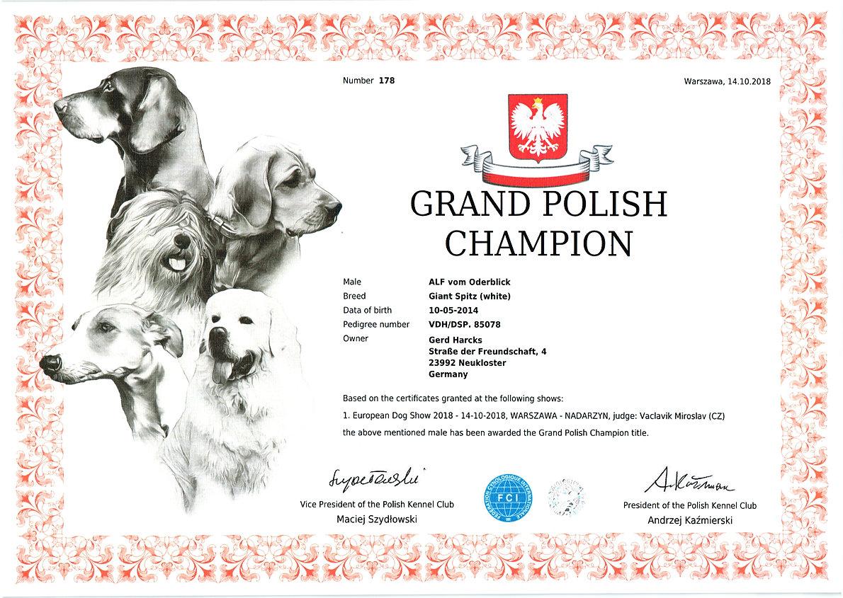 2018-10-14_alf-vob polish grand champion