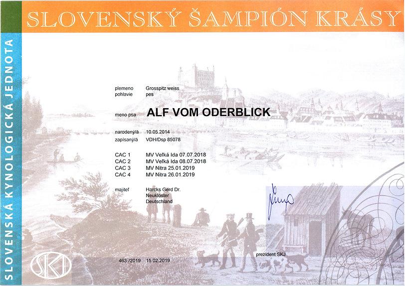 2019-02-15_alf-vob sk champion.jpg