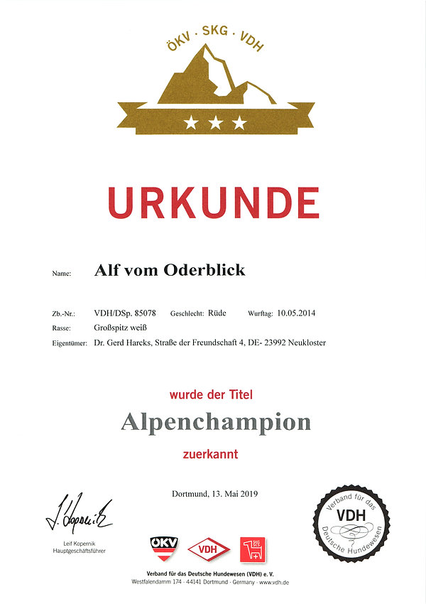 2019-05-13_alf-vob-alpenchampion.jpg