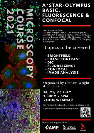 Basic, Fluorescence & Confocal Microscop