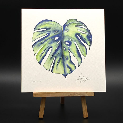 MONSTERA PALM EDITION LIMITEE 24X24 BRUT