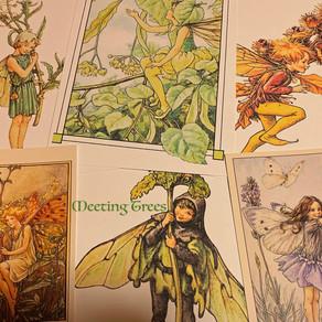 2月19日開講「花の妖精から学ぶ英国ハーブ療法講座」4回目のお知らせ