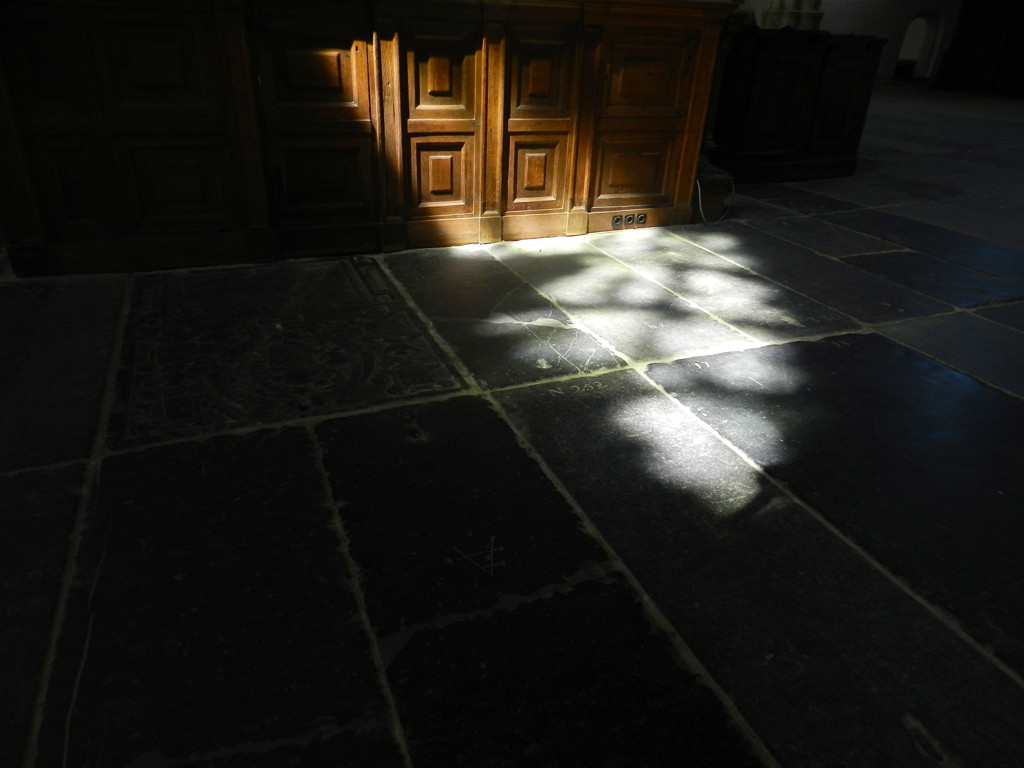 between light and darkness.jpg
