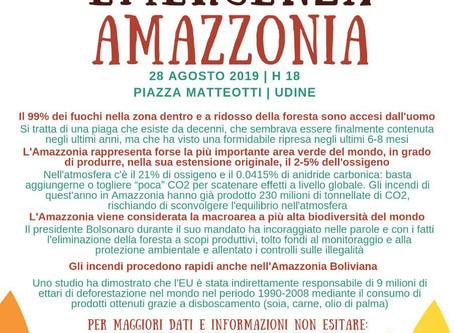 """Report sul presidio """"Emergenza Amazzonia"""""""