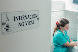 Del Interior Hospital Veterinario -1123.
