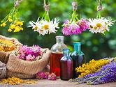 flores de bach naturopatia.jpg