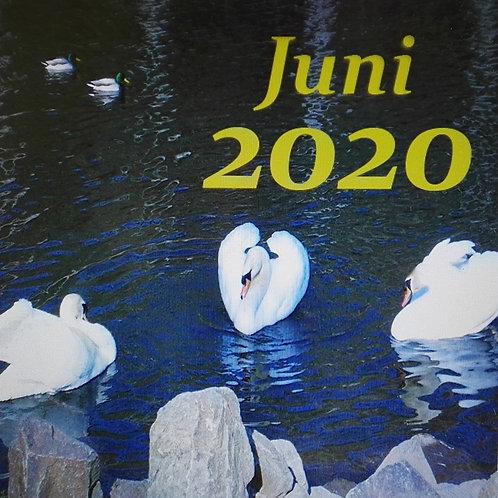 Monats-Essenz Juni 2020
