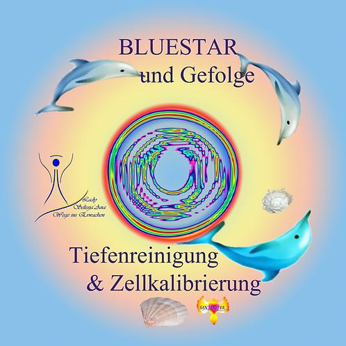 BlueStar und Gefolge - Tiefenreinigung & Zellkalibrierung