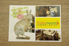 Postkarten drucken Aachen Druckerei