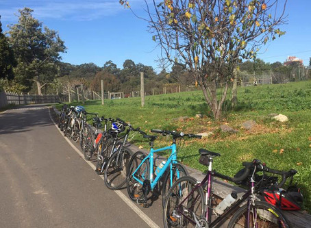 Cycling Back to JOY