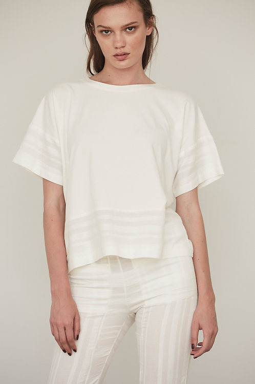 RECTANGLE LINE TOP