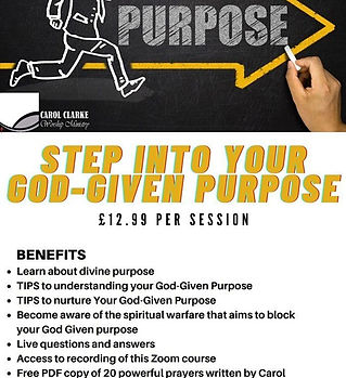 purpose flyer.jfif