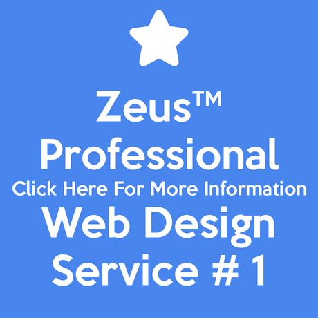 Professional Web Design Service # 1