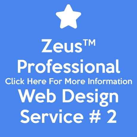 Professional Web Design Service # 2