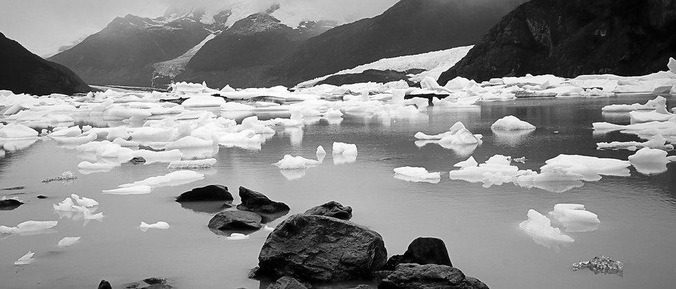 IVA Curso de Fotografía, naturaleza y medio ambiente
