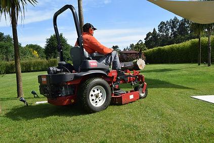 Mulching-jardinería-mantenimientos