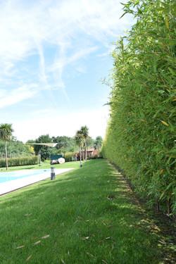 Cierre-natural-bambú