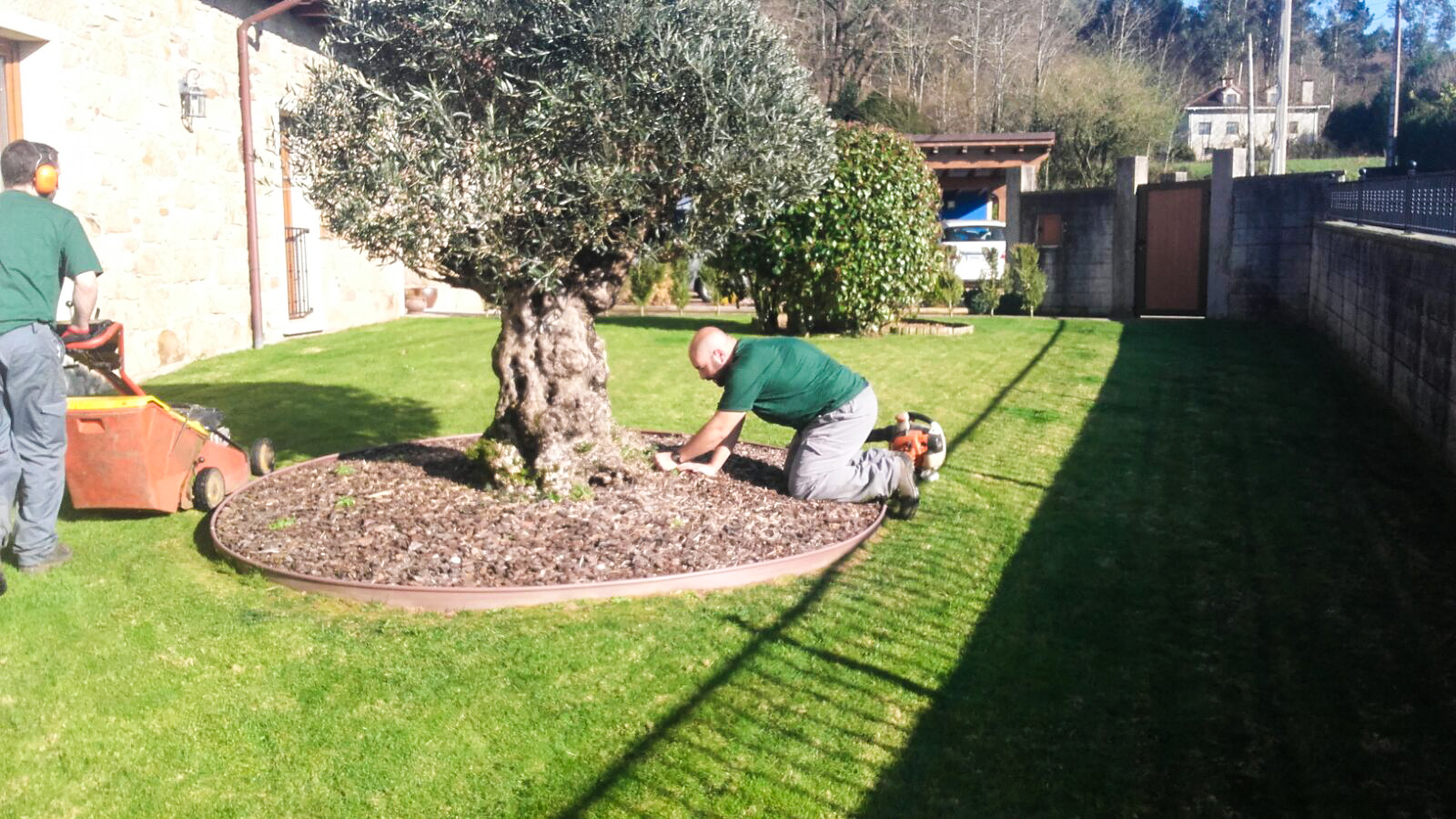Mantenimiento-jardines