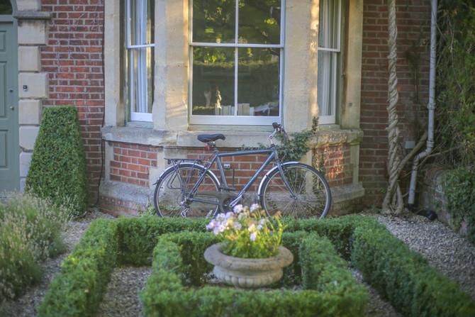 Pasos para diseñar el jardín que siempre soñaste (II)