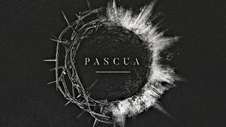 PASCUA-web.png