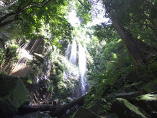 Royal Belum Waterfall