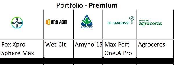 Portfólio - Premium.png