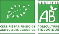 Logo AB UE non UE.png