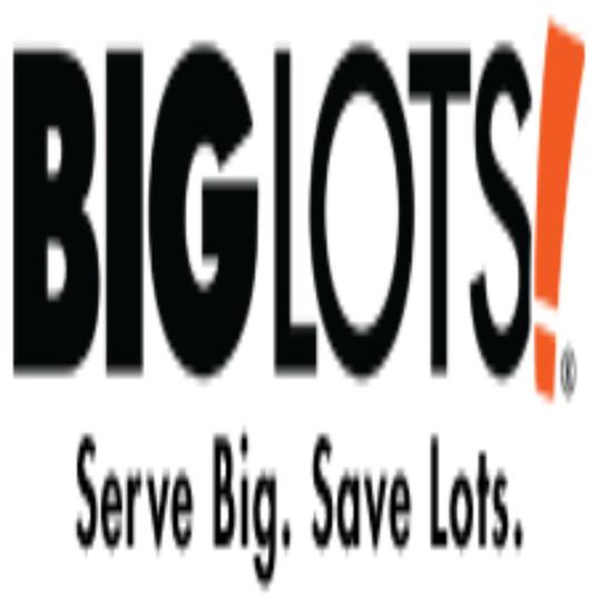 biglots-webready.jpg
