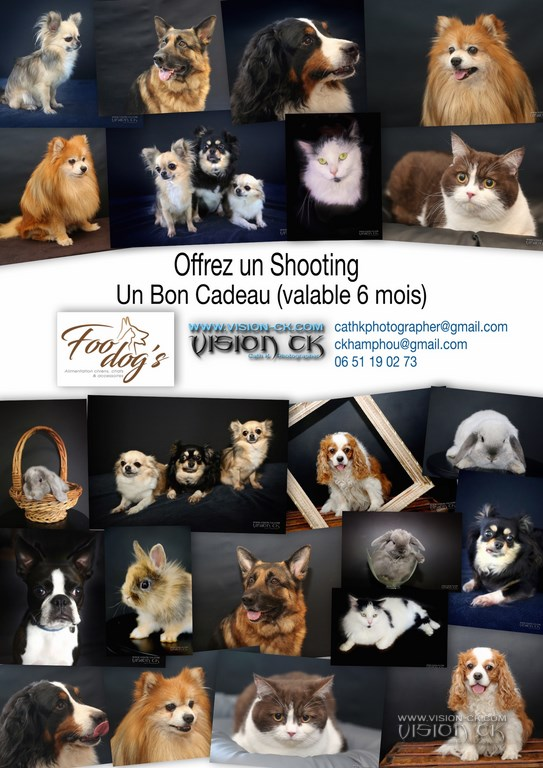 BON CADEAU SHOOTING FODDOGS 2018 (BD LOG
