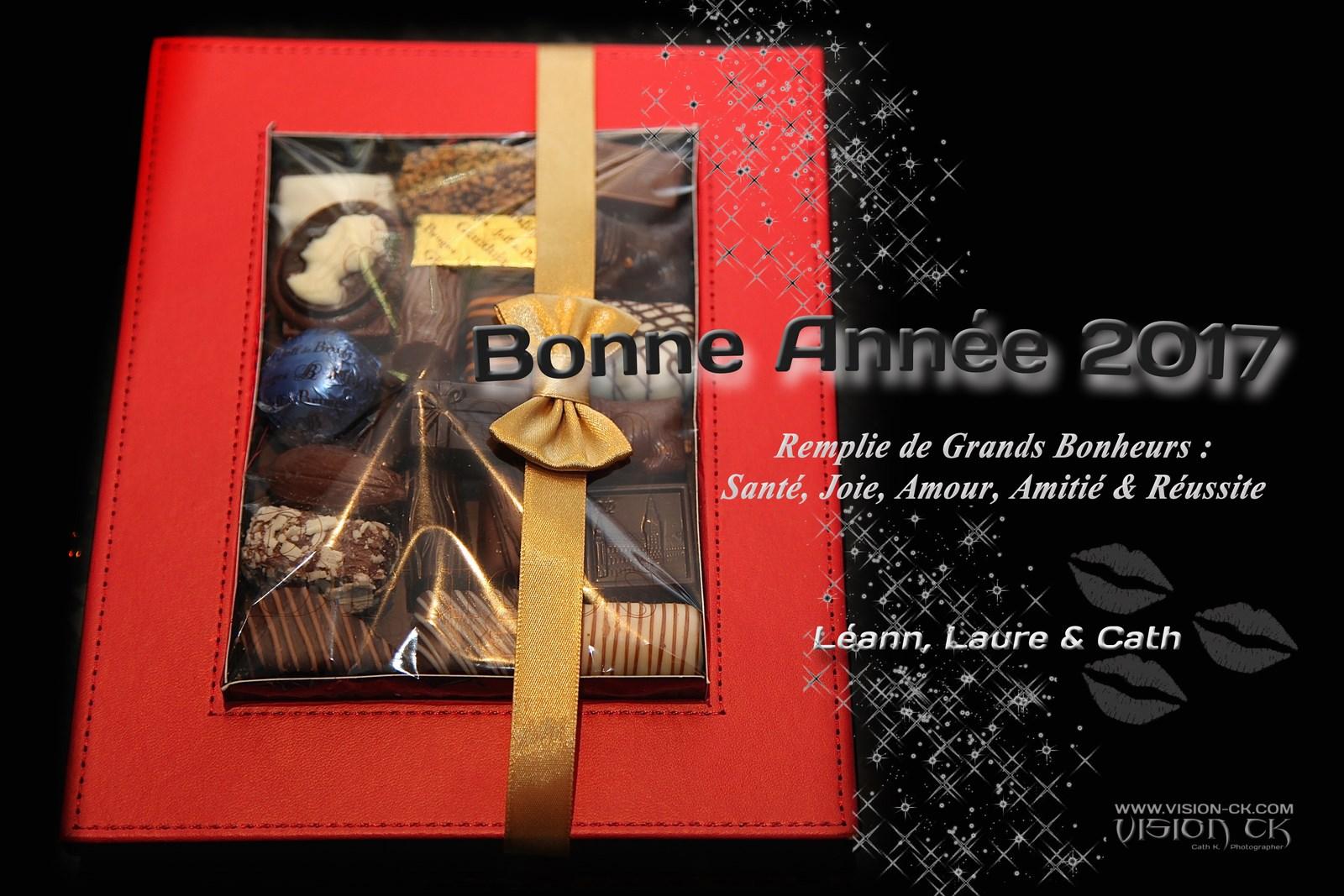 IMG_2849 BONNE ANNEE NOUS (LOGOTE)