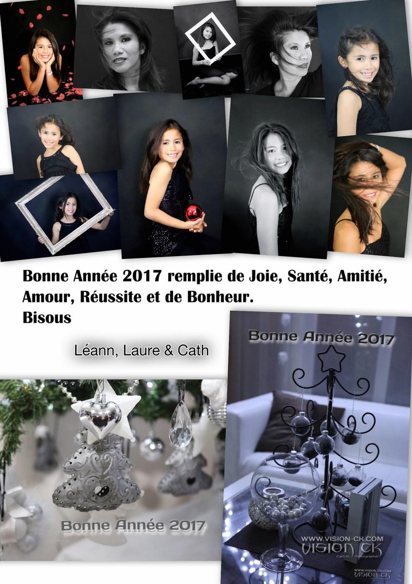 Carte BONNE ANNEE 2017 FAMILLE (LOGOTE)