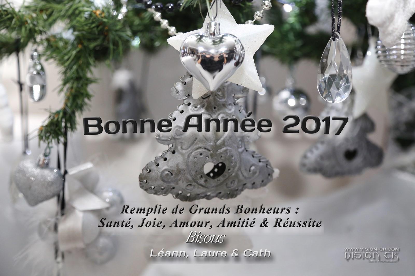 DE3A1880 BONNE ANNEE VOEUX 2 (LOGOTE)