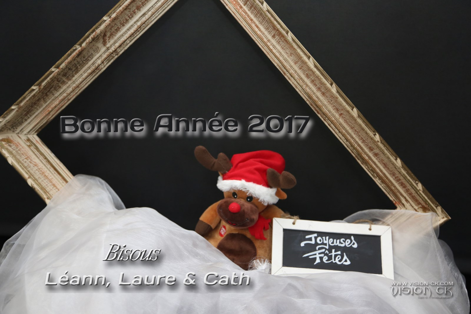 DE3A2804 BONNE ANNEE DE NOUS (LOGOTE)