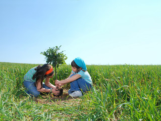 THE NEED OF TRAINING OR EDUCATION TO RESPECT OUR ENVIRONMENT